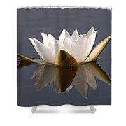 White Waterlily 2 Shower Curtain