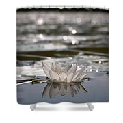 White Waterlily 3 Shower Curtain