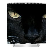 White Whiskers Shower Curtain