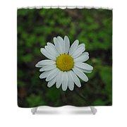 White Wild Flower  Shower Curtain