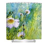 White Wild Poppies Shower Curtain