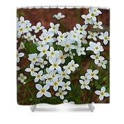 White Wildflowers Shower Curtain