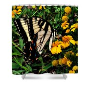 White Wing Butterfly Shower Curtain