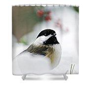 White Winter Chickadee Shower Curtain