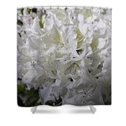 White Wit Shower Curtain