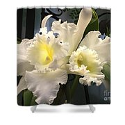 White With Yellow Orchids  Shower Curtain