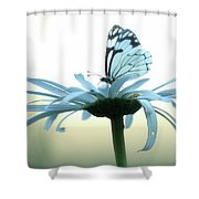 Prize Shower Curtain