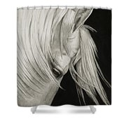 Whitefall Shower Curtain