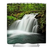 Whitehorse Falls 1 Shower Curtain