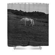 Whitehorse Shower Curtain