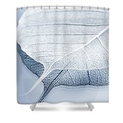 Whiter Shade Of Pale Shower Curtain