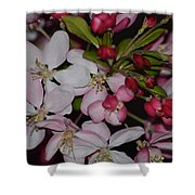 Whites And Reds Shower Curtain