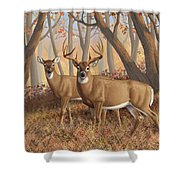 Whitetail Deer Painting - Fall Flame Shower Curtain by Crista Forest