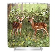 Whitetail Deer Twin Fawns Shower Curtain by Crista Forest