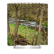 Whitewater River Spring 43 Shower Curtain
