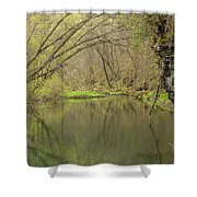 Whitewater River Spring 51 Shower Curtain