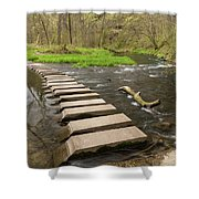 Whitewater River Spring 52 Shower Curtain
