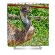 Who Are You? Shower Curtain