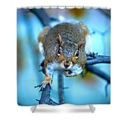 Who Are You Looking At? Shower Curtain