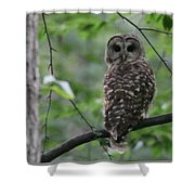 Who? Shower Curtain