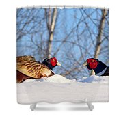 Who Blinks First? Shower Curtain