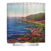Who Is Out There? Shower Curtain