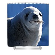 Who Me? Shower Curtain