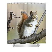 Who Me Shower Curtain