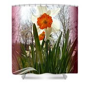 Who Planted Those Flowers Shower Curtain
