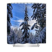 Who-ville Shower Curtain