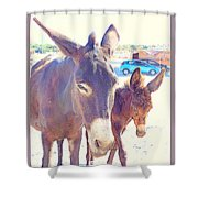 Who Wants A Blue Car When You Can Have Donkeys Shower Curtain