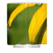 Whole World Water Drop Shower Curtain