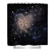 Wholehearted Love Shower Curtain