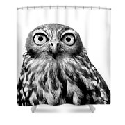 Whoo You Callin A Wise Guy Shower Curtain