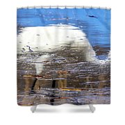 Whooping Crane Reflection Shower Curtain
