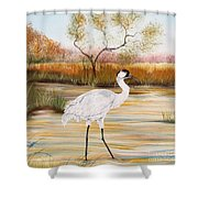 Whooping Cranes-jp3156 Shower Curtain