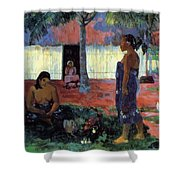 Why Are You Angry 1896 Shower Curtain