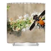 Why Fly Shower Curtain