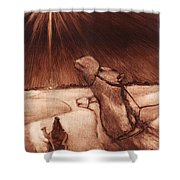 Why Would Wisemen Follow A Star? Shower Curtain by Linda Anderson