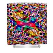 Wicker Marble Rainbow Fractal Shower Curtain