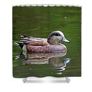 Widgeon Duck Shower Curtain