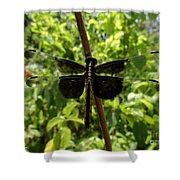 Widow Skimmer Dragonfly Female Shower Curtain