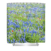Wild About Wildflowers Of Texas. Shower Curtain