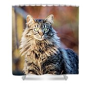 Wild And Beautiful Shower Curtain