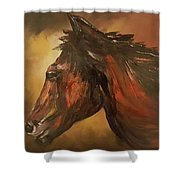 Wild And Free                   83 Shower Curtain