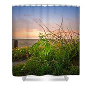 Wild At Sunrise Shower Curtain