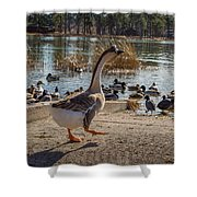 Wild Birds #1 Shower Curtain