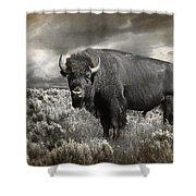 Wild Buffalo In Yellowstone Shower Curtain