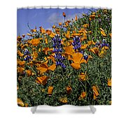 Wild California Poppies And Lupine Shower Curtain