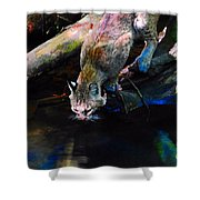 Wild Cat Drinking Shower Curtain